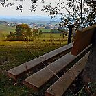 Bench with nature and scenery | landscape photography by Patrick Jobst