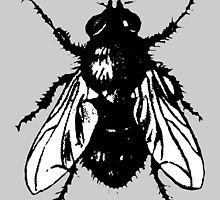 The Fly (bicolor) by theshirtshops