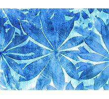 Blue Stars Photographic Print