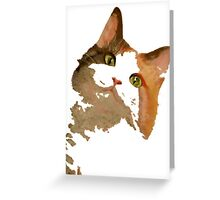I'm All Ears - Cute Calico Cat Portrait Greeting Card