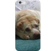 But I Just Got Comfortable... iPhone Case/Skin