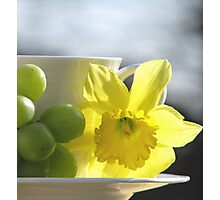 Sipping Spring Photographic Print