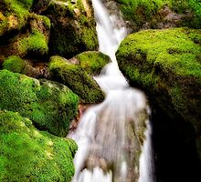 Moss Falls by Scott Ward