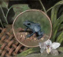 Tree frog by Grant Slabbert