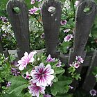 Flowers Along The Fence by Tom  Reynen