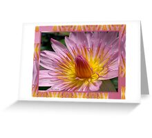 TenderNESS Greeting Card