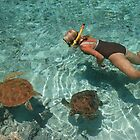 Swimming with turtles at lagoon in Bora Bora, Tahiti by chord0