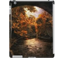 Tunnel Vision iPad Case/Skin