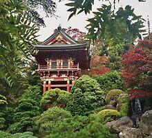 Japanese Tea Garden, San Francisco, usa by chord0