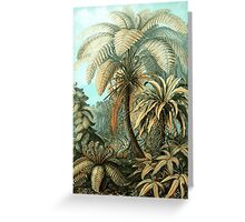 Prehistoric Palms Greeting Card