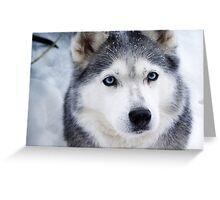 Blue eyed girl  Greeting Card