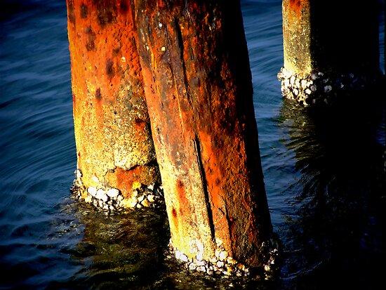 Orange Poles by Tania Rose