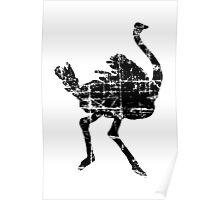 Ostrich Vintage Poster