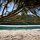 Tallebudgera Beach by RhondaR