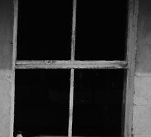 Window to empty by William Hixson
