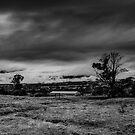 Mist on the Plains by Mark  Lucey