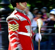When the Guards are on Parade by Colin Shepherd