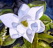 magnolia 2 by derekmccrea