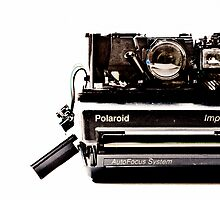 anatomy of a polaroid by claude77