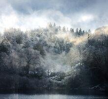 Hides the Winter's Heart by Kenart
