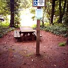 Picnic area for Disabled only? by hilarydougill