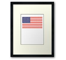 American flag, Stars & Stripes, Old Glory, The Star-Spangled Banner, Faded. America, USA Framed Print