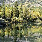 Autumn Reflections by Michael Beckett