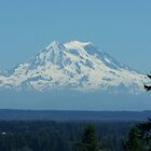 Mt. Rainier by mermanda