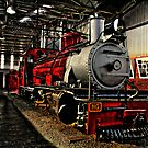 Out of Steam by Deon de Waal