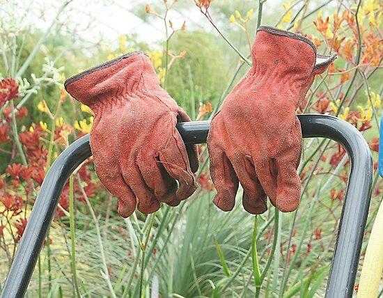 Gardener wanted by David Meacham
