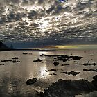 The Cloud Garden of Pukerua Bay by Peter Kurdulija