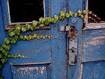 Blue Door by Ray4cam