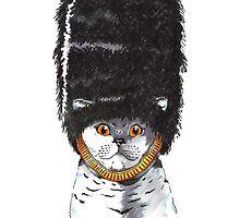 Feline Origins- The British Shorthair by FallenFantasy