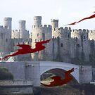 Dragons at play by ccrcats