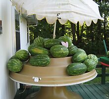 Cove Road market melons in June by Laurkat