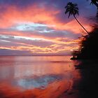 molokai sunset by TowerOne