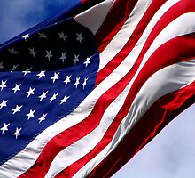 Old Glory by Krystle Fleming