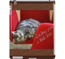 Kitty Cat Sending Love iPad Case/Skin