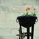 Tulips by Lolabud