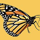 Monarch Butterfly by TinaGraphics