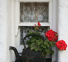 COTTAGE WINDOW by Sean Farragher
