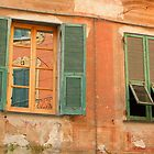 Window reflections by SylviaCook