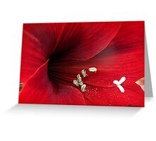 Affairs Of The Heart Greeting Card