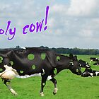 Holy Cow! by MooseMan