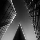 Apex by Alan Robert Cooke