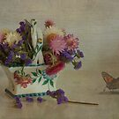 Everlasting flowers in vase with butterfly by eddiej