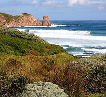 Woolamai Coast by Dave Law