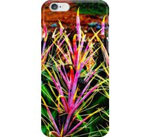 Red Spine Barrel Cactus Top Detail iPhone Case/Skin