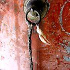 Red door by Yulia Dreyzis