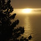 Big Sur Sunset by katsie78